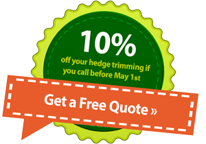 current promotion on tree trimming - 10% off